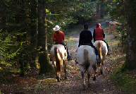 france horse riding 2